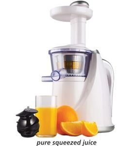 Glen GL-4016 150W Slow Juicer Price in India