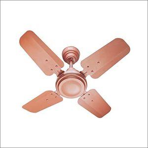 Warmex Sleek (CF 01) 4 Blade Ceiling Fan Price in India