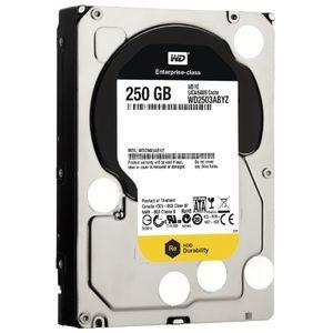 WD RE SATA III (WD2503ABYZ) 250GB internal Hard Drive Price in India