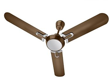 Polycab Regalia 3 Blade (1200mm) Ceiling Fan Price in India