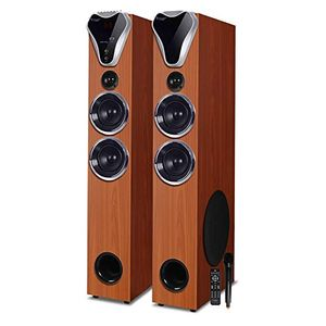 Truvison SE-555 2.0 Channel Tower Speaker Price in India