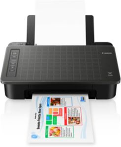 Canon PIXMA TS307 Inkjet Printer Price in India