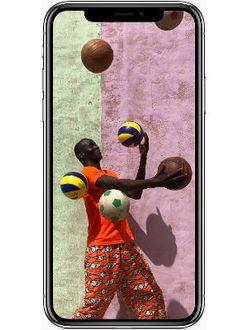 Apple iPhone X 256GB  Price in India