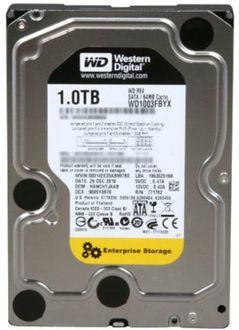 WD RE4 (WD1003FBYX) 1TB Desktop Internal Hard Disk Price in India
