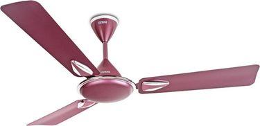 Usha Vetra Plus 3 Blade (1200mm) Ceiling Fan Price in India