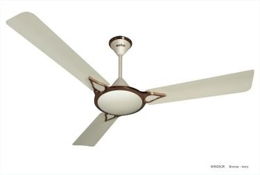 Activa Windsor 3 Blade (1400mm) Ceiling Fan Price in India