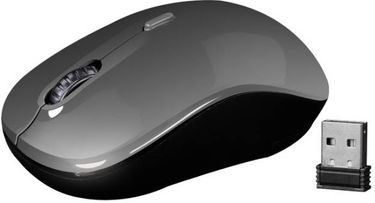Zebronics Zoom Wireless Mouse Price in India