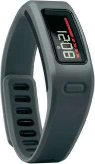 Garmin Vivofit Fitness Band Price in India