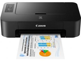 Canon Pixma TS207 Single Function Inkjet Printer Price in India