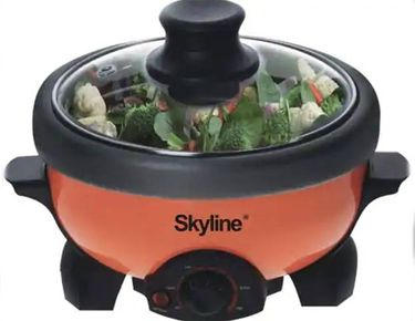 Skyline VTL-333 2L Deep Fryer Rice Cooker Price in India